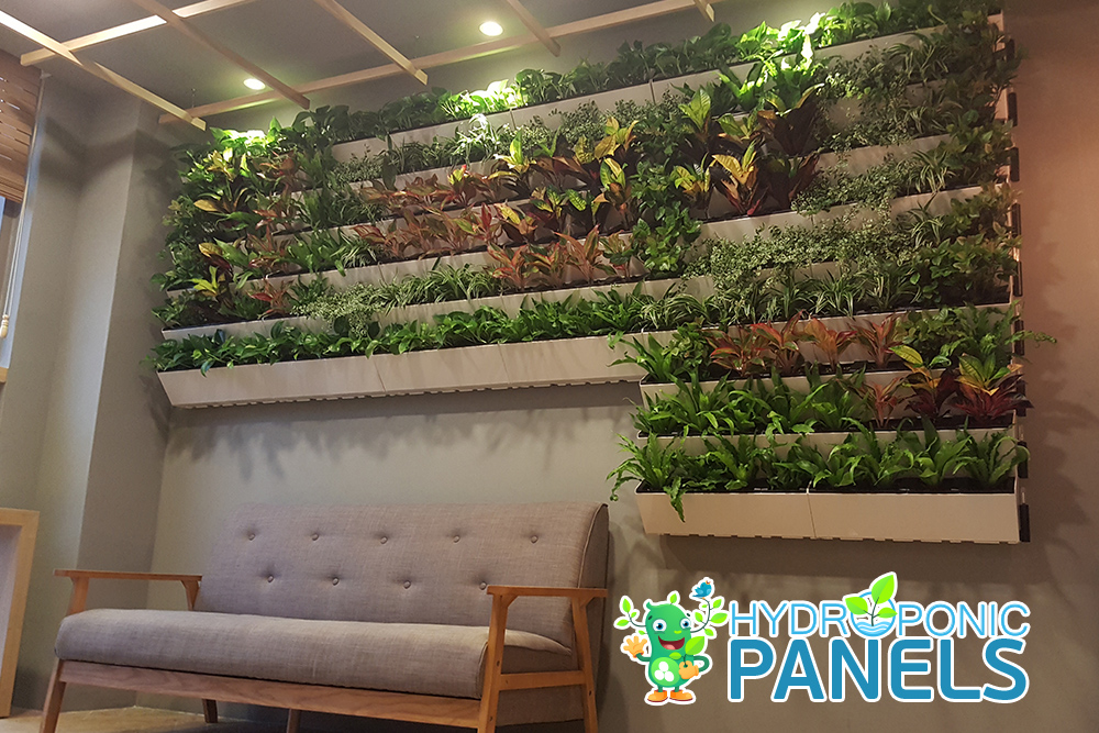 Indoor Hydroponic Wall Gardens